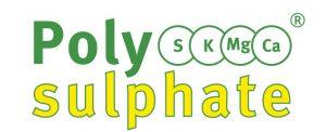 Polysulphate 0-0-14+17CaO+6MgO+48SO3
